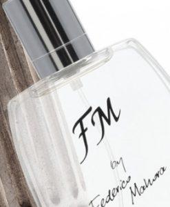 FM110